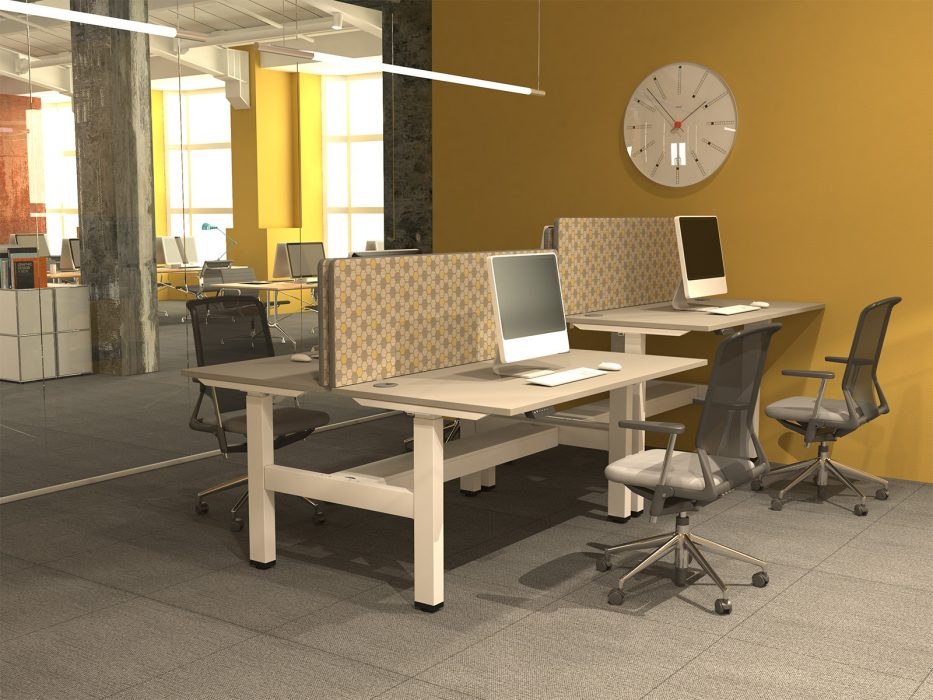 height adjustable, sit stand, white frame, grey desktop, double bench, back-to-back desk, dividing screen, cable managment
