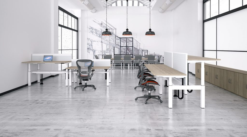 height adjustable, sit stand, back-to-back desk, double bench, white frame, oak desk, dividing screen, cable management, slinky, spine, premium controller